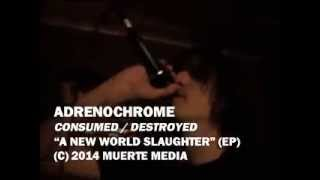 ADRENOCHROME - Consumed/Destroyed (offical video)