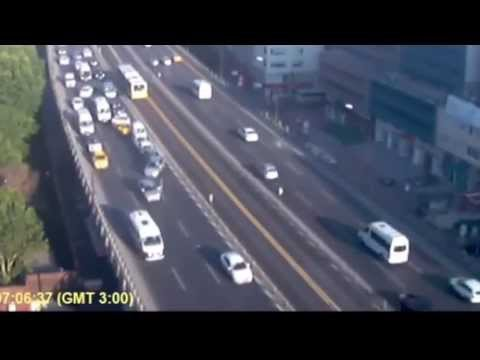 [Seagull Causes Huge Pile-up on Motorway!] Video