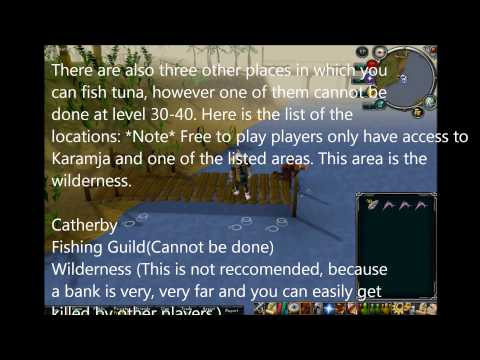 Ultimate Runescape 99 Fishing Guide for Free To Play and Members 2012! READ DESCRIPTION