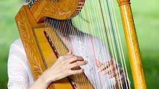 Morning Relaxing Music - Harp Music, Yoga Music, Study Music, Massage Music (David)