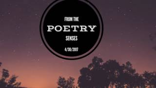 Poetry Workshop | Writing Workshops Dallas | Poetry from the Senses