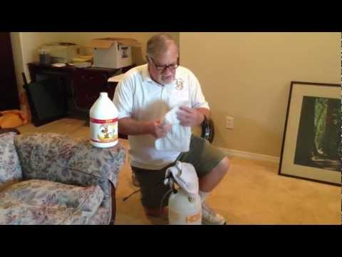 how to clean dog piss from carpet