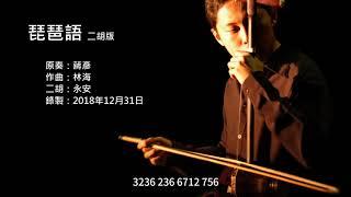 林海 琵琶語 二胡版 By 永安 Lin Hai What The Pipa Says Erhu