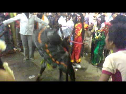 Kulasekarapattinam Mutharamman Dasara-by சிபி சக்கரவர்த்தி video