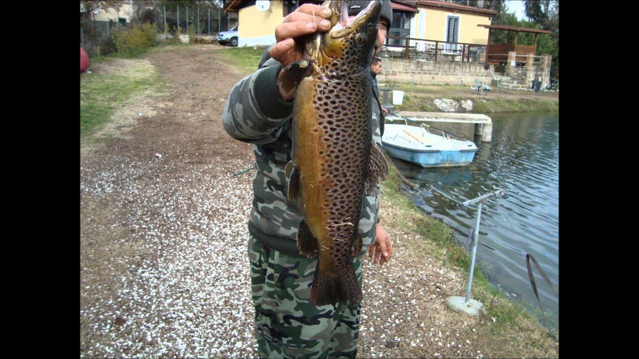 La pesca e la caccia per guardare il video in linea