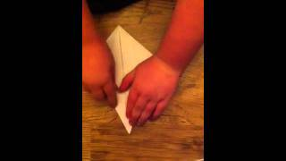 How To Make An Origami Flapping Swan