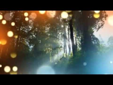 Gentle Music: For Healing & Recovery, Relaxing, Tranquility | Relaxation With Isochronic Tones video