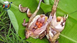 Country Chicken Curry in my Province   Rooster and Hen Curry Recipe   Rooster chicken fry in village