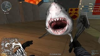 Funny Moments in Crossfire Philippines # 11 Ninja's and Shark