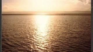 Watch Neil Young Shining Light video