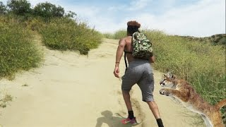 WE HAD TO RUN FROM A MOUNTAIN LION!! | Mega McVlogs