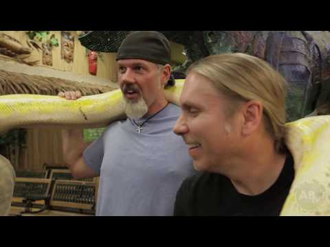When Big Snakes Bite! : SnakeBytesTV - Ep. 411 : AnimalBytesTV
