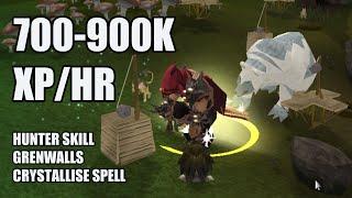 Runescape! Crystallise at Grenwalls 700-900K Hunter XP/HR