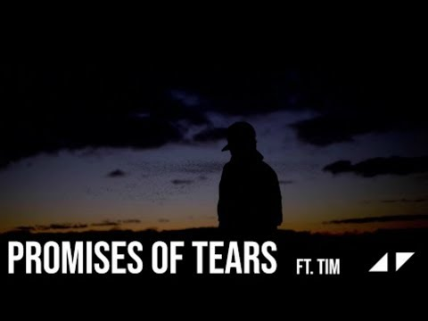 "Avicii - Promises of Tears ""Audio"" ft. Tim Bergling"
