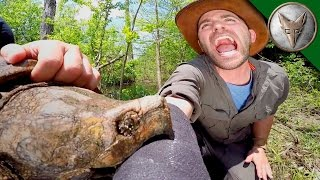 Brave Wilderness | CRAZY Alligator Snapping Turtle Bite!