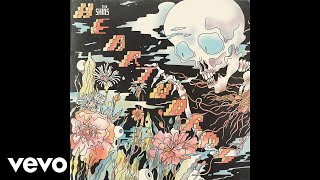 The Shins - Painting A Hole (Audio)