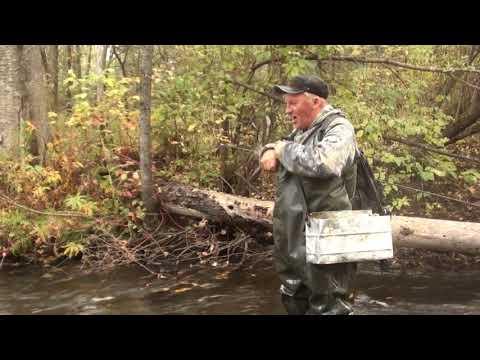 фильмы о рыбалке в приморском крае