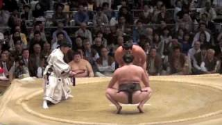 Sumo Wrestling - Final Bout