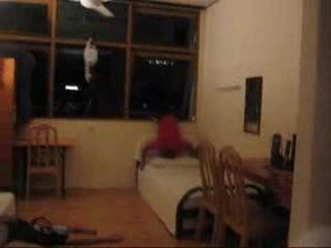 Aksi  Ganas video