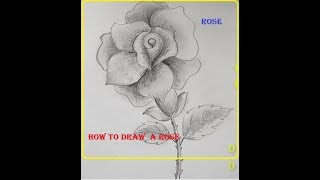How to Draw a Rose || Very easy Rose to Draw
