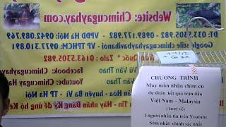 CT dự đoán Kq trận Việt Nam-Malaysia lượt về nhận chim cu hay