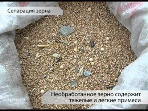 Как очистить зерно в домашних условиях