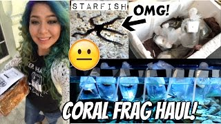 unboxing LIVE corals! and setting them up (my first time)...i