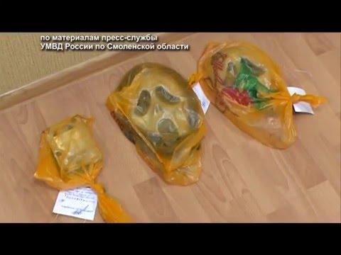 Десна-ТВ: День за днем от 8.02.2016 г.
