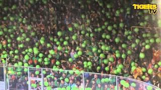 In Langnau regiert die Farbe grün