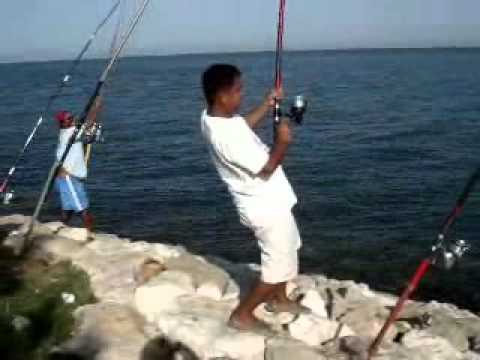 Khobar Anglers - My Fish Catch (Lapis) video 3 years back