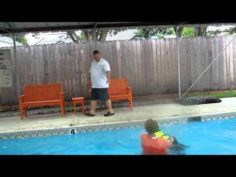 dog swim class 006.MOV