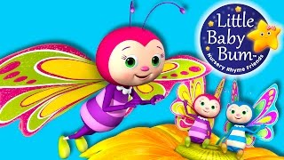 Butterfly Song | Nursery Rhymes | Original Song By LittleBabyBum!
