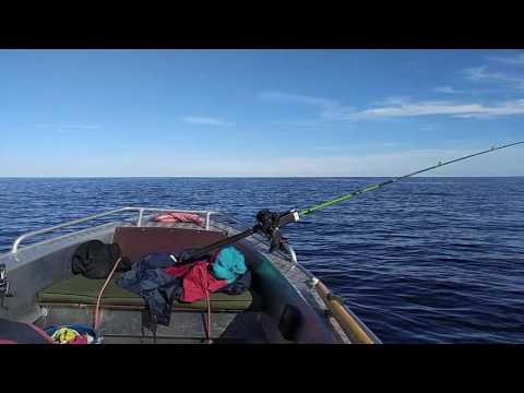 лодка вельбот 37 видео ютуб