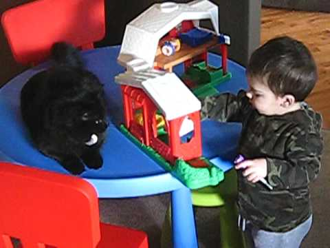 Noodnick the Cat is Baby's best friend