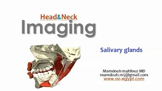 Imaging of Salivary glands - DRE 9 - Dr Mamdouh Mahfouz