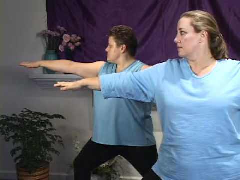 Yoga   Overweight People on Dvd Available Now  This Is A Preview Of Sally Pugh S Home Yoga C