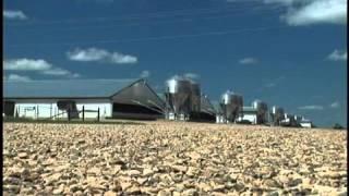 Seaboard Farms