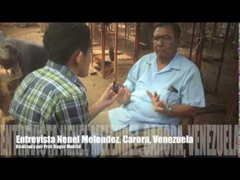 Entrevista Nenel Melendez Galleros de Venezuela