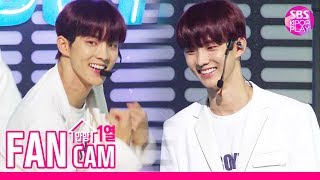 [안방1열 직캠4K] 더보이즈 큐 'D.D.D'  (THE BOYZ Q FanCam)│@SBS Inkigayo_2019.08.25