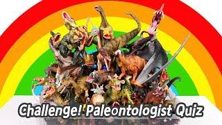[EN] Challenge! Paleontologist Quiz, dinosaurs names for children, collecta figuresㅣCoCosToy