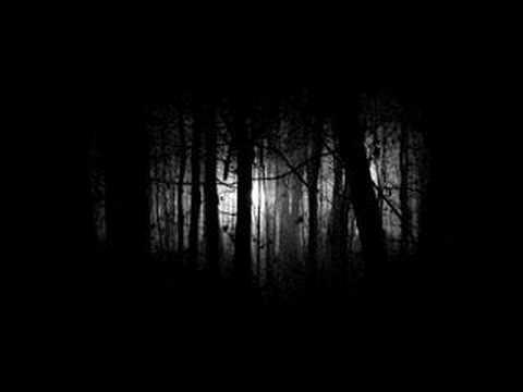Insomnium - Devoid Of Caring