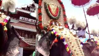 Paramekkavu Sree Padmanabhan at Thrissur Pooram 2010 Video