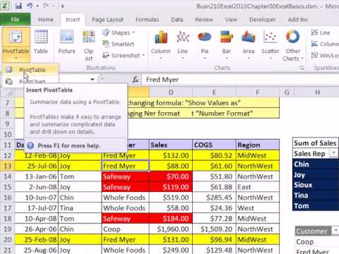 Excel 2010 Statistics 06: Data Analysis: Sorting and PivotTables