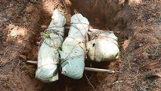 Primitive Catching & Cooking Food - AMAZING Grill Fish with Lotus Leaves and Mud