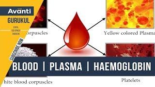 Blood | Plasma | Haemoglobin | Body fluids and Circulation | Class 11 Biology