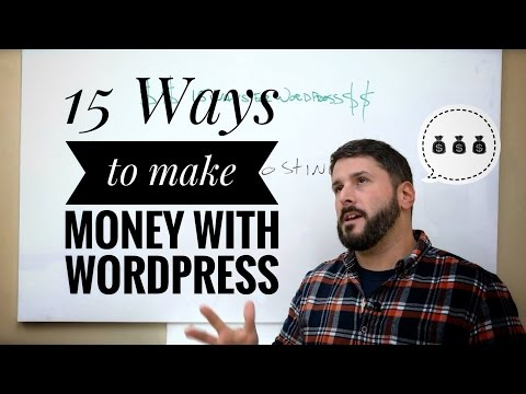 15 Ways to make money with WordPress in 2017   Online business: freelancers, designers, developers