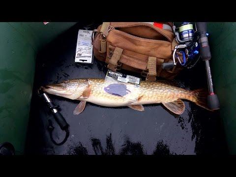 рыбалка весной на окуня и щуку
