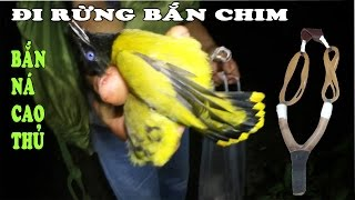 Đi Rừng Bắn Chim Bằng Ná Thun - Cao Thủ Bắn Ná - Bách Phát Bách Trúng