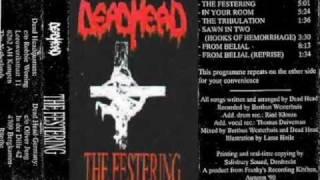 Watch Dead Head The Festering video