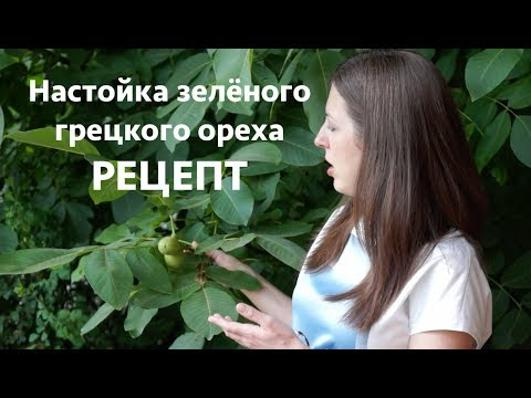 Настойка зелёного грецкого ореха рецепт